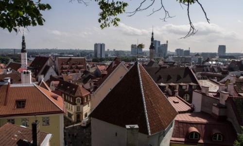 Zdjecie ESTONIA / - / Tallin / Tallin