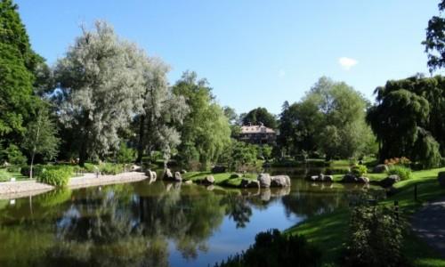 Zdjecie ESTONIA / Harjumaa / Tallinn / Ogród Japoński