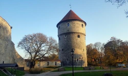ESTONIA / Harjumaa / Tallinn / Kiek in de Kök