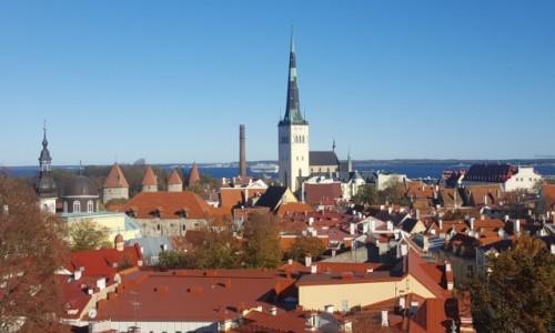 ESTONIA / Harjumaa / Stare miasto / Nad dachami