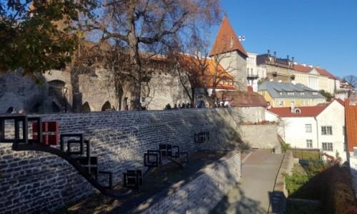 Zdjęcie ESTONIA / Harjumaa / Stare miasto / Na murach