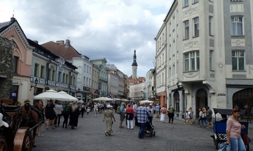 Zdjęcie ESTONIA / - / Tallinn / Tallińska starówka