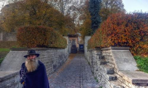 Zdjecie ESTONIA / Harjumaa / Tallinn / Jesień w Tallinie