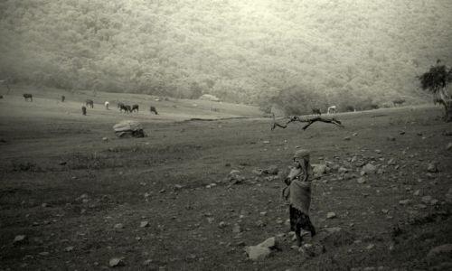 Zdjęcie ESTONIA / północna Etiopia / Góry Simen / pastuszek