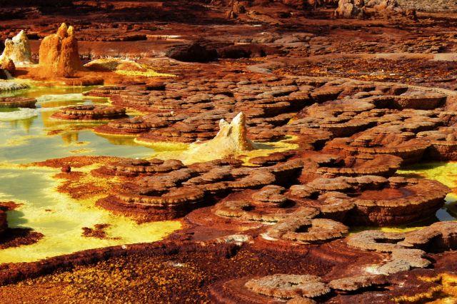Zdjęcia: Dallol, Afar, Plantacja grzybów - solnych oczywiście, ETIOPIA