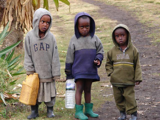 Zdjęcia: Góry Simen, -Etiopia Północna , grupka dzieci , ETIOPIA