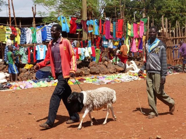 Zdjęcia: Konso, DOLINA OMO, Targ niedaleko Konso, ETIOPIA