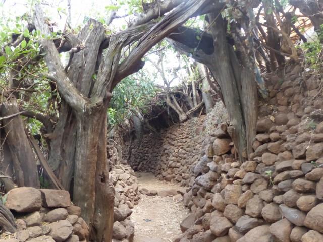 Zdjęcia: Meczeke, DOLINA OMO, Uliczka w wiosce Meczeke, ETIOPIA