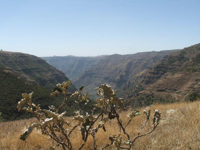 Zdjęcia: Siemen Mountains, Góry Siemen, Po prostu góry, ETIOPIA