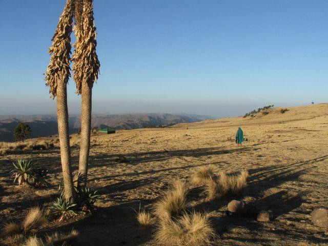 Zdjęcia: Siemen Mountains, Góry Siemen, Widok z obozu pierwszego, ETIOPIA