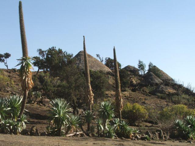 Zdjęcia: Siemen Mountains, Góry Siemen, Wioska w górach, ETIOPIA