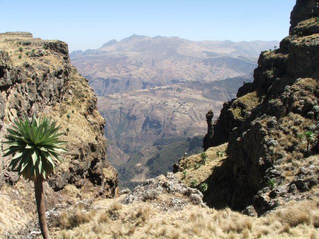 Zdjęcia: góry Siemen, Siemen Mountains, Porażają mnie wspomnienia tego piękna, ETIOPIA
