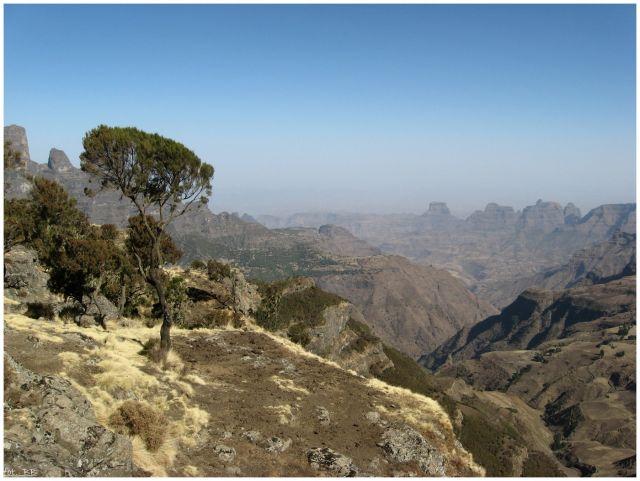 Zdj�cia: Siemen Mts, Siemen Mts, Widok�w nigdy do��..., ETIOPIA