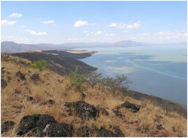 Zdjęcia: Nechisar National Park, Etiopia południowa, Nechisar NP i jezioro Chamo, ETIOPIA