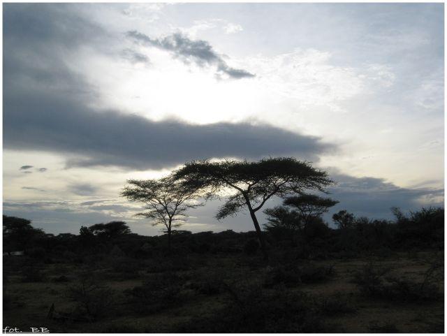 Zdjęcia: Turmi  godzina 17.45, Etiopia - południe, Zapada zmrok..., ETIOPIA