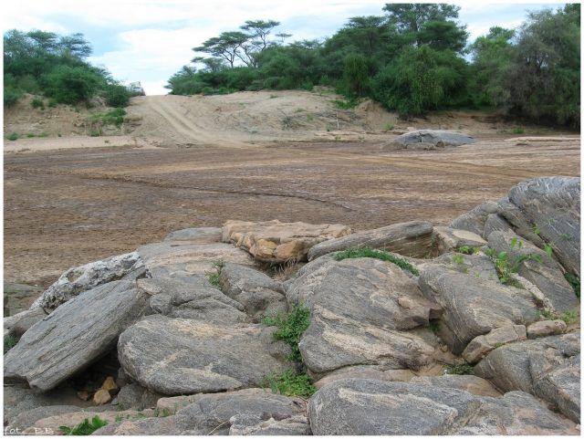 Zdjęcia: Turmi - nad rzeką Keske, Etiopia południowa, Keske - rzeka której nie ma..., ETIOPIA