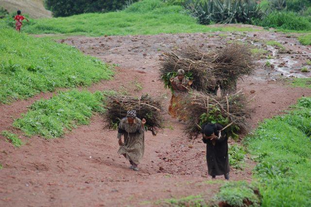 Zdjęcia: etiopia, kobiety przy pracy, ETIOPIA