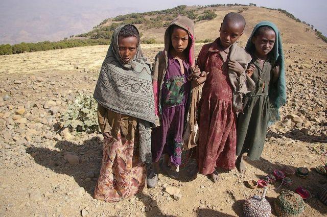 Zdjęcia: Góry Siemen, Północna Etiopia, W oczekiwaniu na turystę, ETIOPIA