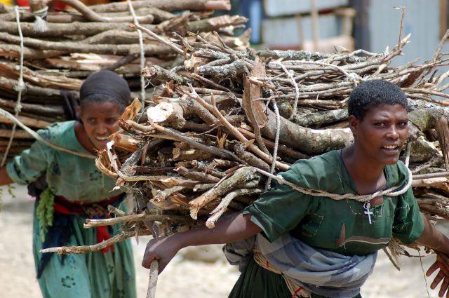 Zdjęcia: Etiopia, Moja Etiopia 4, ETIOPIA