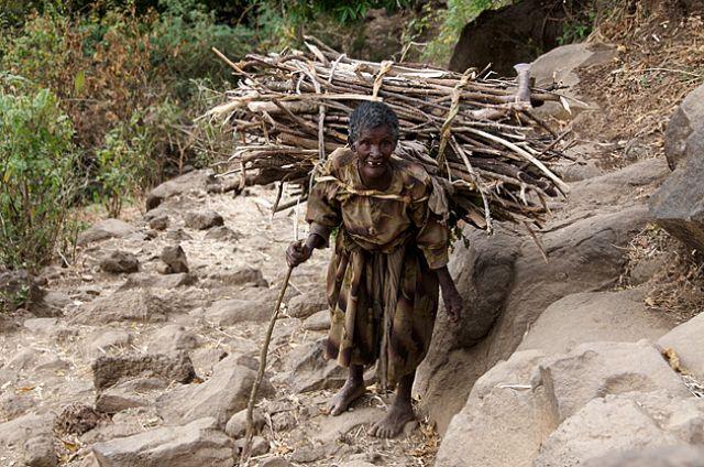 Zdjęcia: BAHIR DAR, Amhara, BAHIR DAR, ETIOPIA