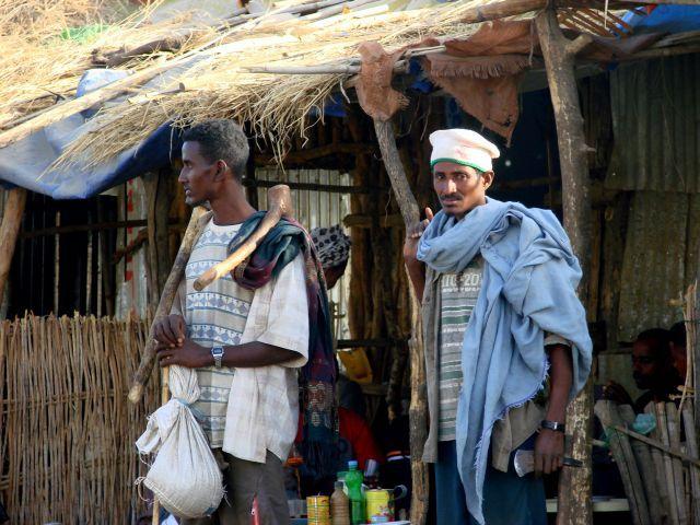 Zdjęcia: Etiopia, Etiopia, Z siekierą, ETIOPIA