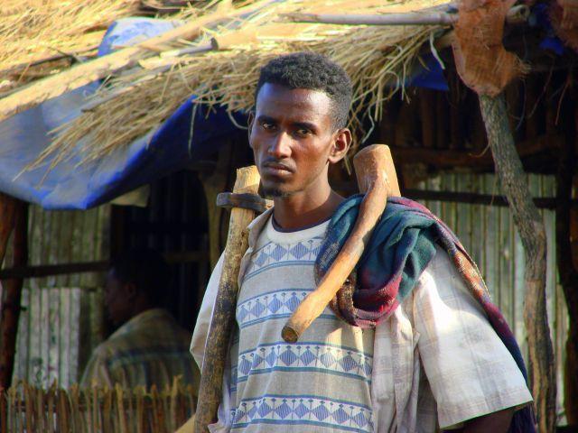 Zdjęcia: Etiopia, Etiopia, Drwal, ETIOPIA