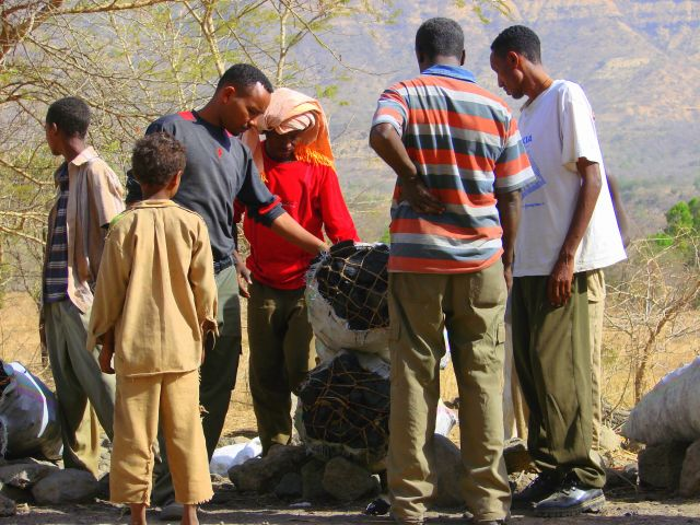 Zdjęcia: Etiopia, Etiopia, Węgiel  sprzedaje, ETIOPIA