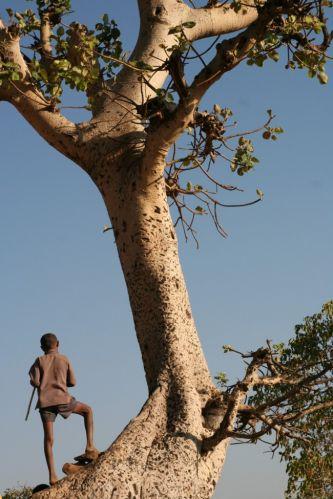 Zdjęcia: niedaleko jeziora Tana, ...., ETIOPIA