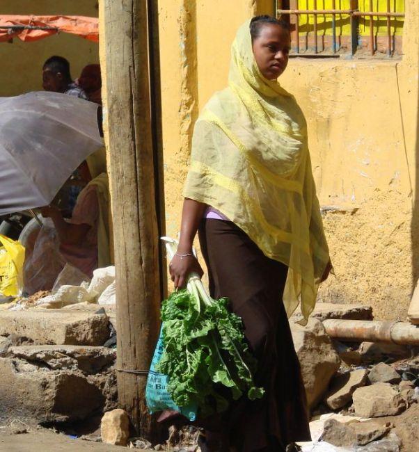 Zdjęcia: Gandor, Gandor, Ziele, ETIOPIA