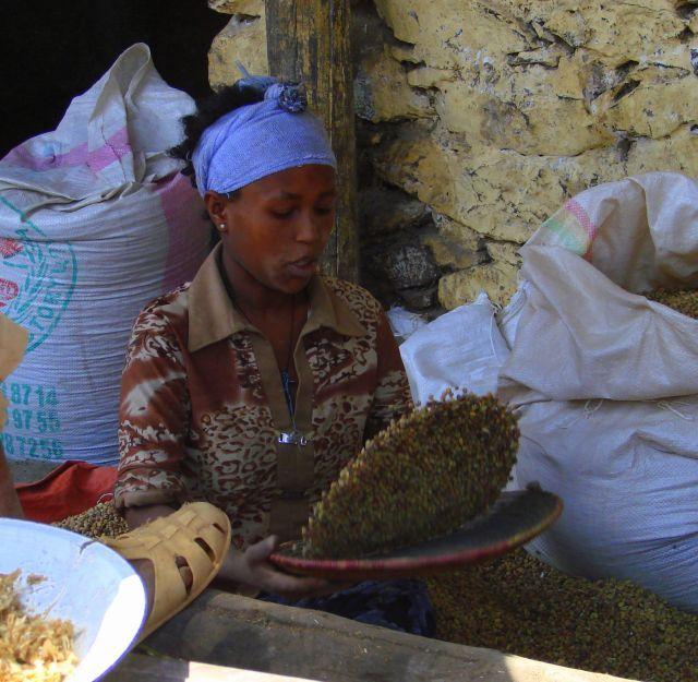 Zdjęcia: Gandor, Gandor, Czyści, ETIOPIA