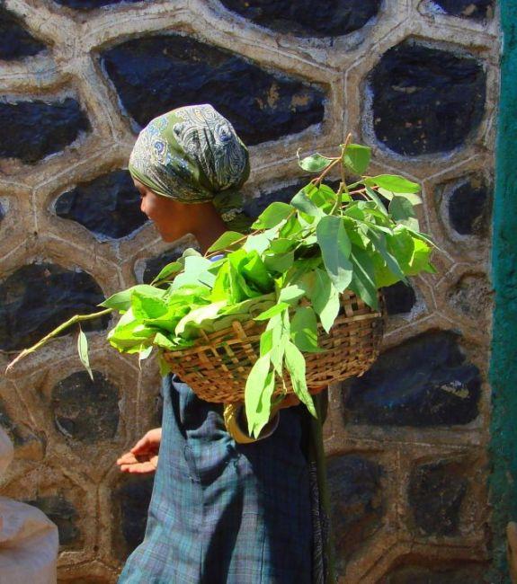 Zdjęcia: Gandor, Gandor, Z zielonym, ETIOPIA