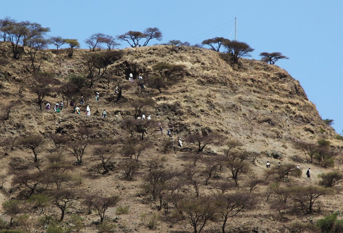 Zdjęcia: Lalibela ,  Amhara, Powrót z porannego nabożeństwa, ETIOPIA