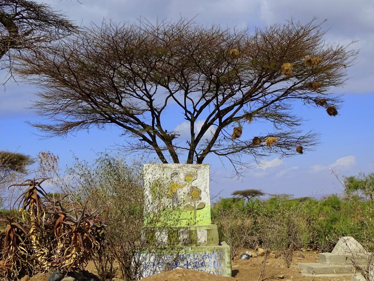 Zdjęcia: środkowa Etiopia, Cmentarz muzułmański, ETIOPIA