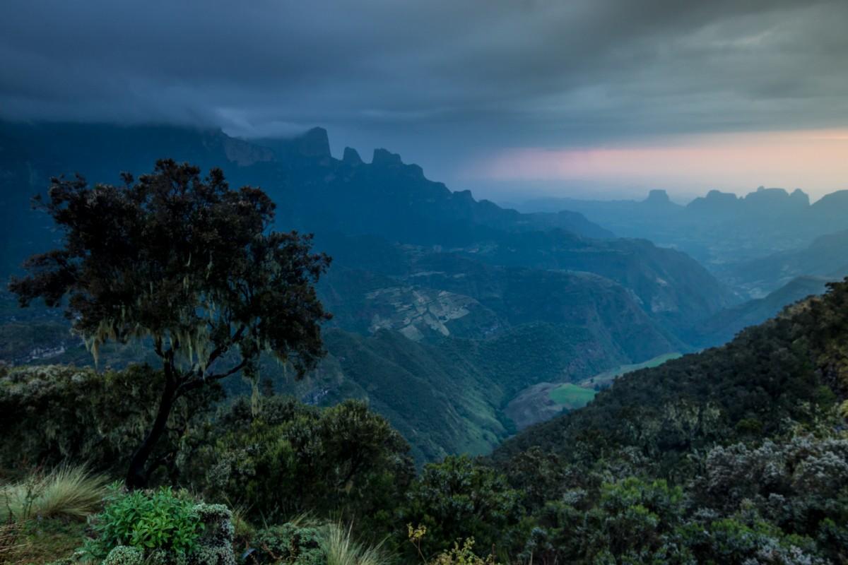 Zdjęcia: Góry Simien, Simien, Cisza, ETIOPIA