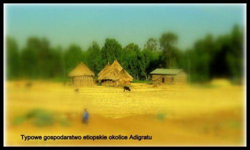 Zdjecie ETIOPIA / - / Okolice Adigratu / Tak mieszkają