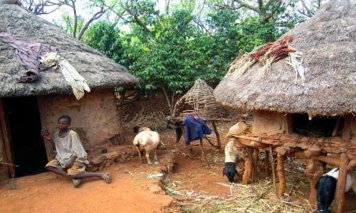 Zdjęcie ETIOPIA / Pd. Etiopia / Wioska ludu konso / Domostwo