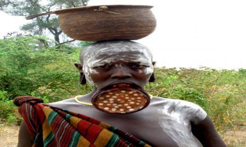 Zdjęcie ETIOPIA / Pd. Etiopia / Wioska plemienia Mursi w Parku Narodowym Mago / Kobieta z plemienia Mursi