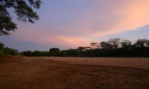 ETIOPIA / Południe kraju / Park Narodowy / Park Mago