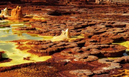 Zdjecie ETIOPIA / Afar / Dallol / Plantacja grzybów - solnych oczywiście