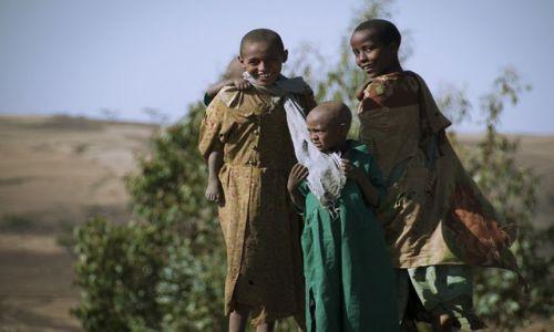 Zdjęcie ETIOPIA / - / okolice Debarku / spotkanie
