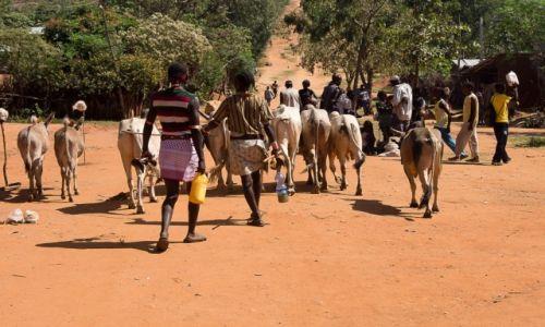 Zdjęcie ETIOPIA / Dolina Omo / Key Afar / Ulica