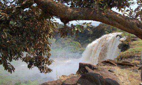 Zdjecie ETIOPIA / centralna Etiopia / ... / wodospad Nilu Bialego