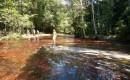Zdjęcie WENEZUELA / Wenezuela / Wenezuela / Jaspisowy potok