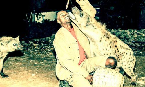 Zdjecie ETIOPIA / - / Harer / człowiek od hien