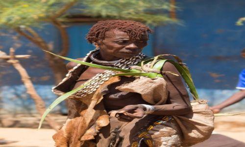 Zdjęcie ETIOPIA / Dolina Omo / wioska Hamerów / Hamerka