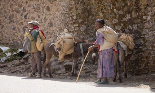Zdjęcie ETIOPIA / Gondar / Gondar / Transport