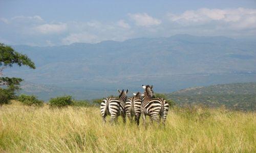 ETIOPIA / - / Park Narodowy Mago / Trzy Gracje