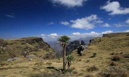 Zdjecie ETIOPIA / Góry Semien / Góry Semien / Góry Semien