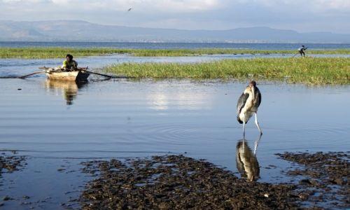 ETIOPIA /  Great Rift Valley / Awasa  / Nad jeziorem