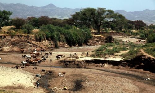 Zdjecie ETIOPIA / Dolina Omo / W drodze do wioski Dorze / Wyschnięta rzeka